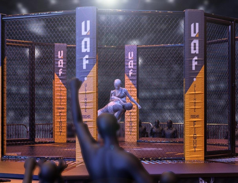 daz3d ultimate fight arena