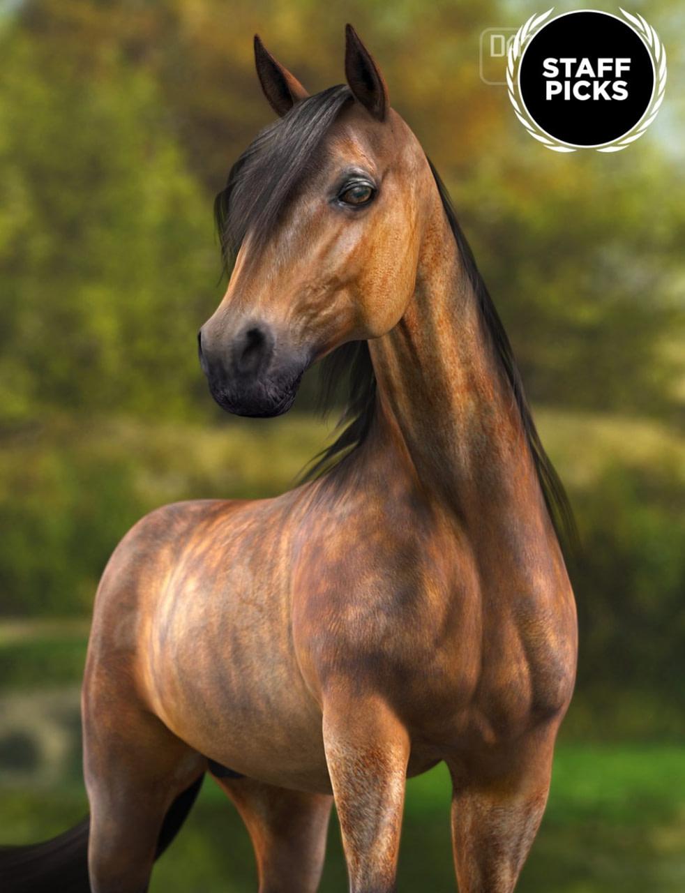 3d model of a horse for daz studio