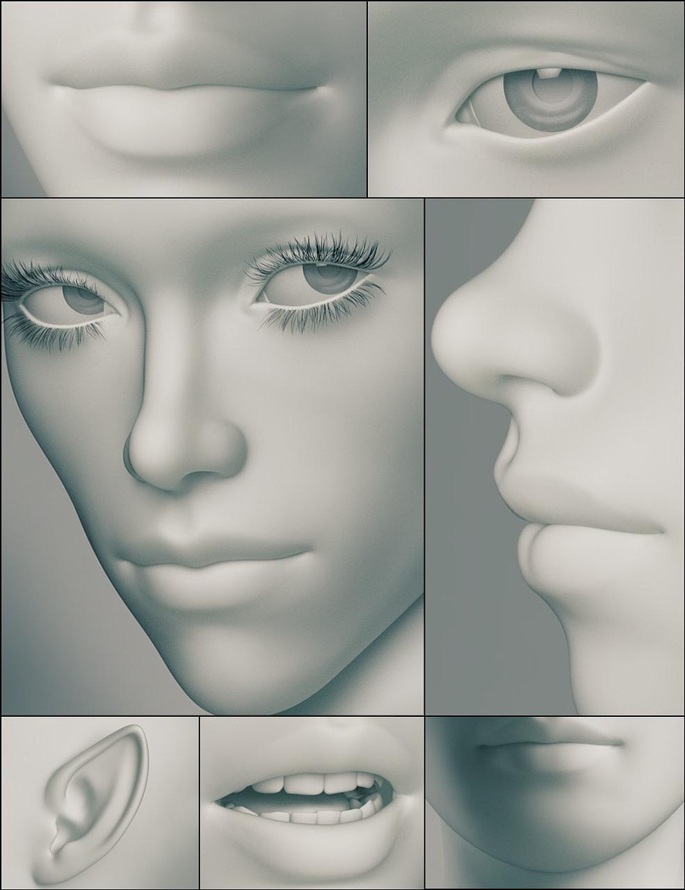daz3d genesis 3 female head morphs