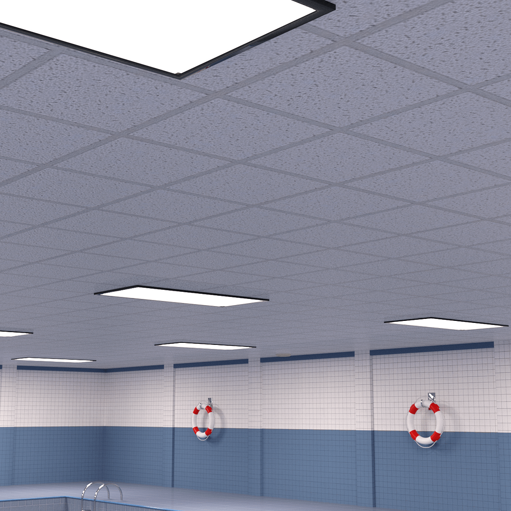 Render showing the roof above the pool