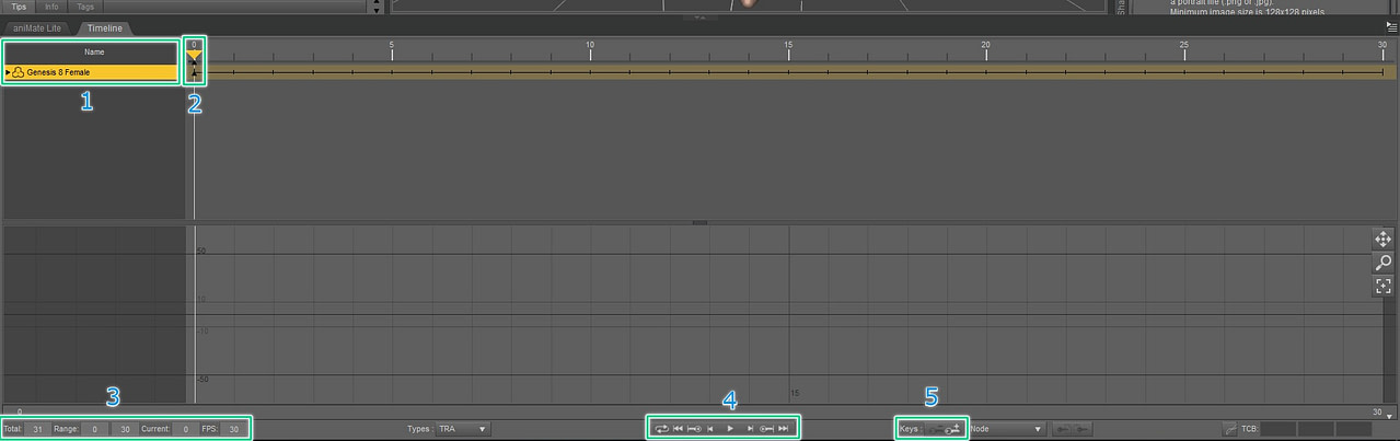 daz3d animation timeline