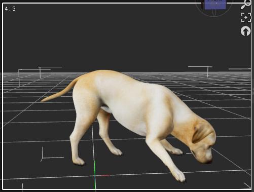 daz3d animation dog pose initial keyframe