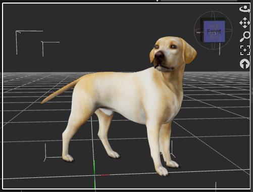 daz3d animation dog pose final keyframe