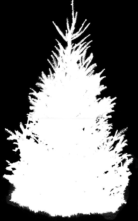 daz alpha channel mask bush cutout opacity