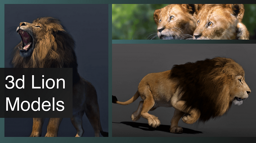 lion 3d models