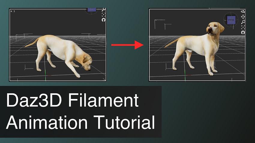 Daz3D Filament Animation Tutorial