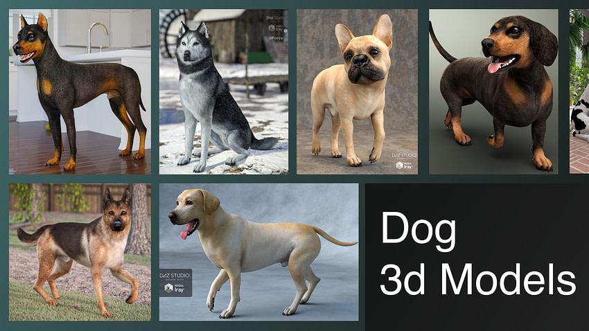 Best Dog 3d Model Review