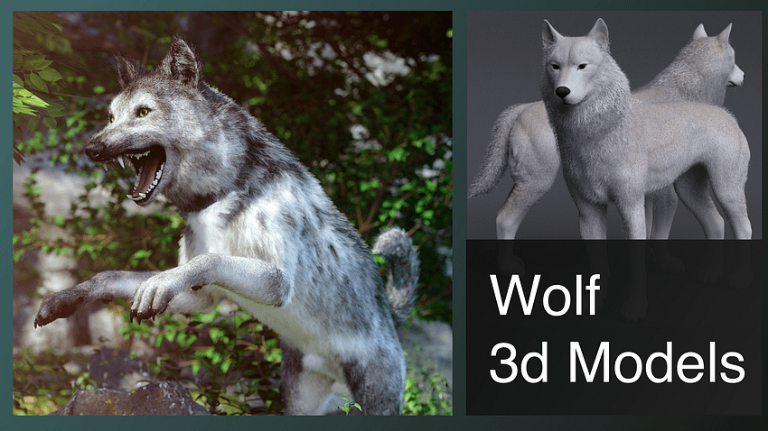 top wolf 3d models