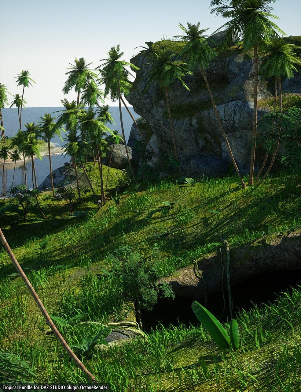 daz studio tropical bundle octanerender