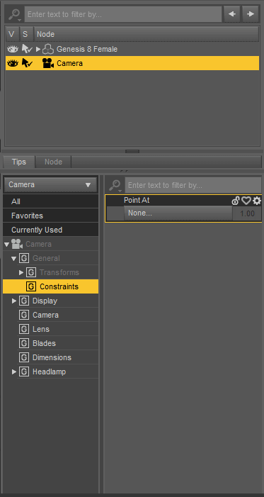 daz studio camera constraints
